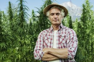 man who owns a cannabis facility that is protected through property insurance in case his facility were to become damaged