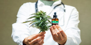 Doctor holding a medicinal marijuana leaf and oil