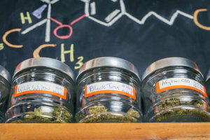 jars of marijuana on a shelf in dispensary with the thc formula written in the background