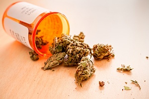 weed that has the benefits of product liability insurance