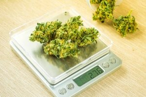 Coronavirus could affect the Cannabis Industry