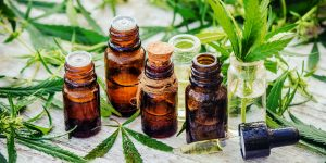 cannabis oil used for vape pens