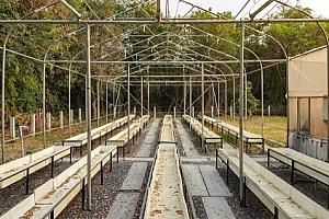 Derelict cannabis hydroponic farm