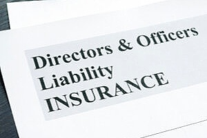 application form for D&O insurance