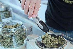 a marijuana dispensary serving Indiana clients