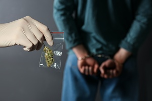 men in handcuffs for having weed covered by crime insurance