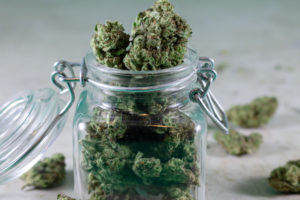 dispensary owner put the cannabis in the jar after attestation j application was approved