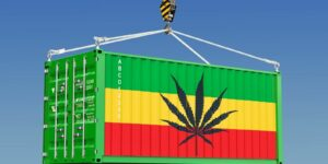 cannabis transportation in big container
